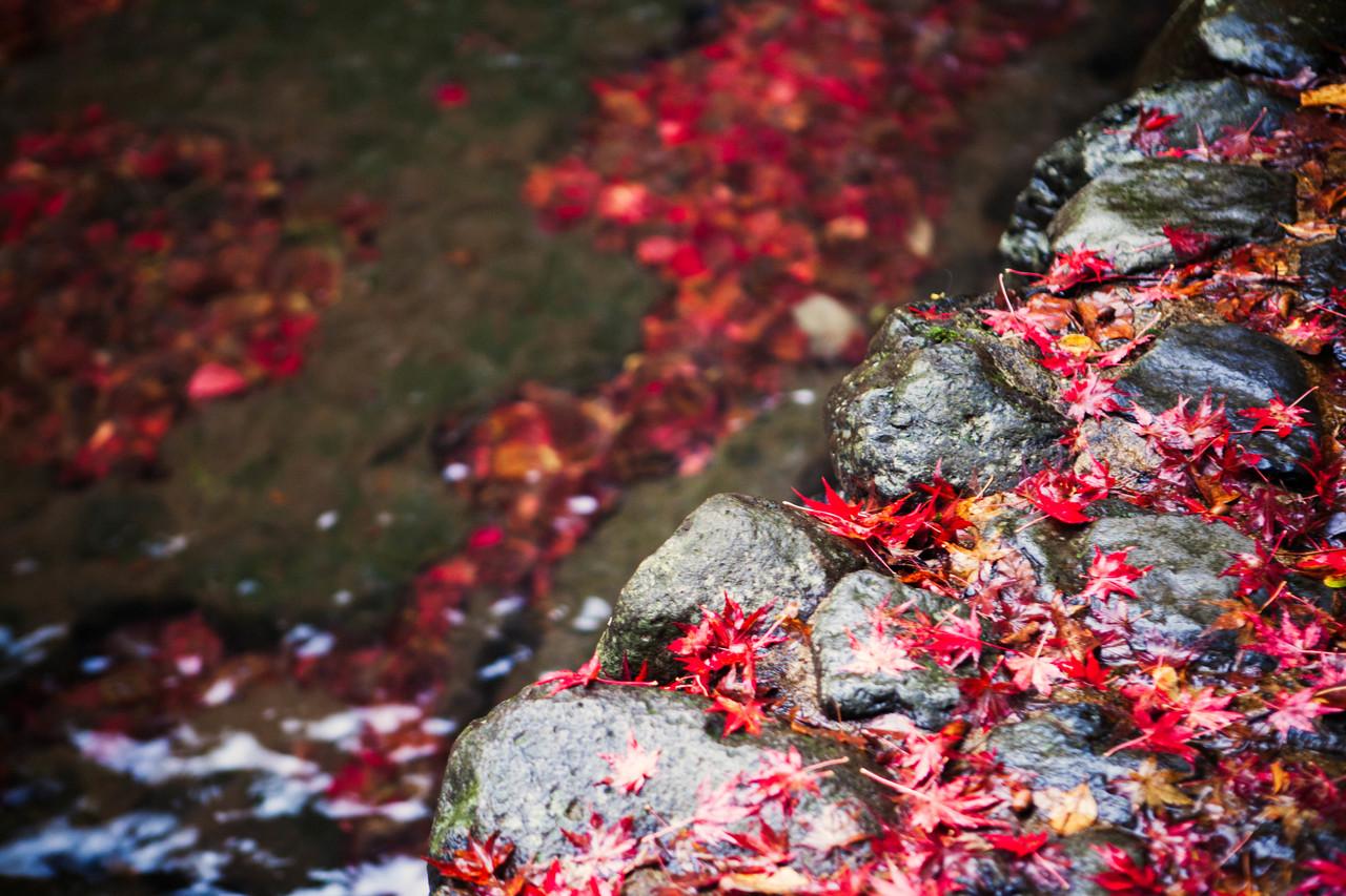 Ryumon dam. / Arita town / Saga / Japan
