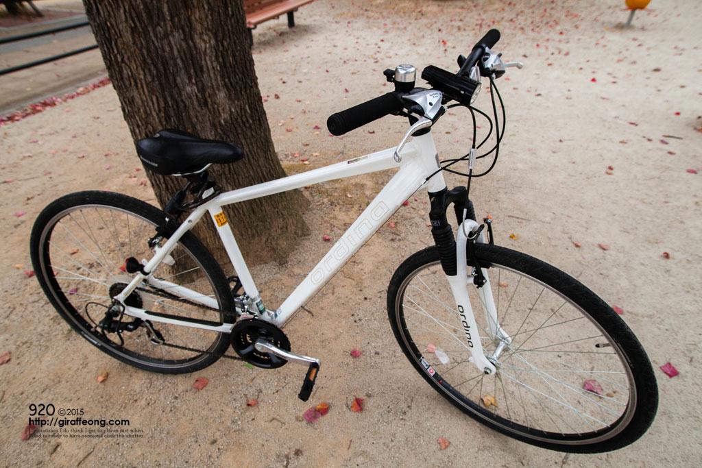 譲ってもらった自転車。 今名前も決めました「ホワイティー」です。