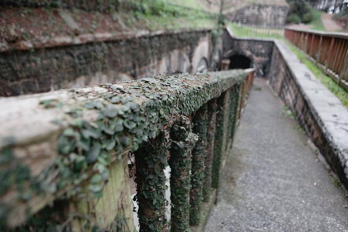 柵は後から建てられたものでしょうが、からみつく蔦がいい味でしてます。