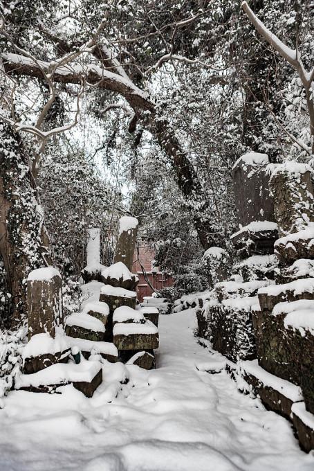雪が積もった墓というのはなかなかにおもむきぶかいと思いました。