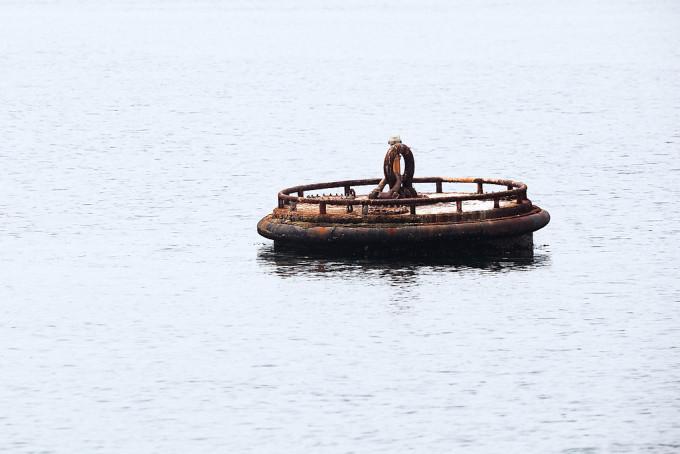 海にたくさん浮かんでいた謎の構造物。なんのために?