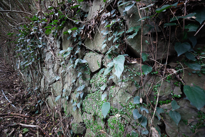 歩いていると人工の石垣が見え始めてきた。自然は容赦なく侵食していました。