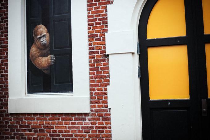 ゴリラも気になるオランダの街