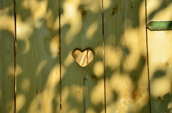 door-heart-toilet-wc-cottage-wood-forest-need