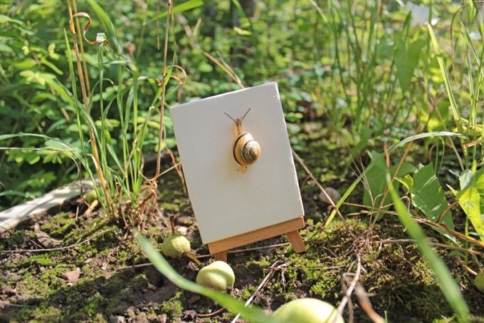 snail-meadow-green-summer-easel-crawl-garden